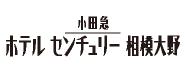 小田急ホテルセンチュリー相模大野